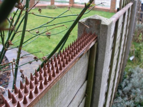 Primrose Fence And Wall Security Spikes Brown 4m Pack